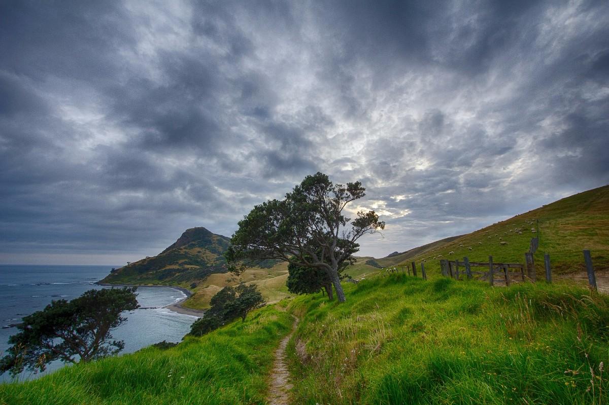 aplikacije za upoznavanje u novom Zelandu